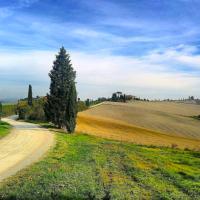 Chianti / Brunello